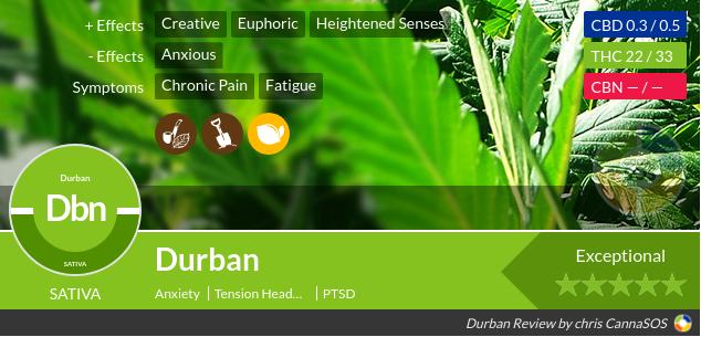 Durban Cannabis Review